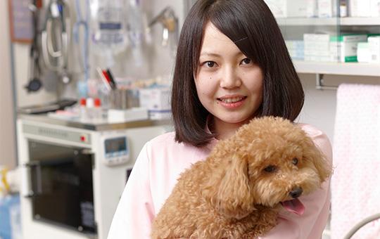 動物看護師学科